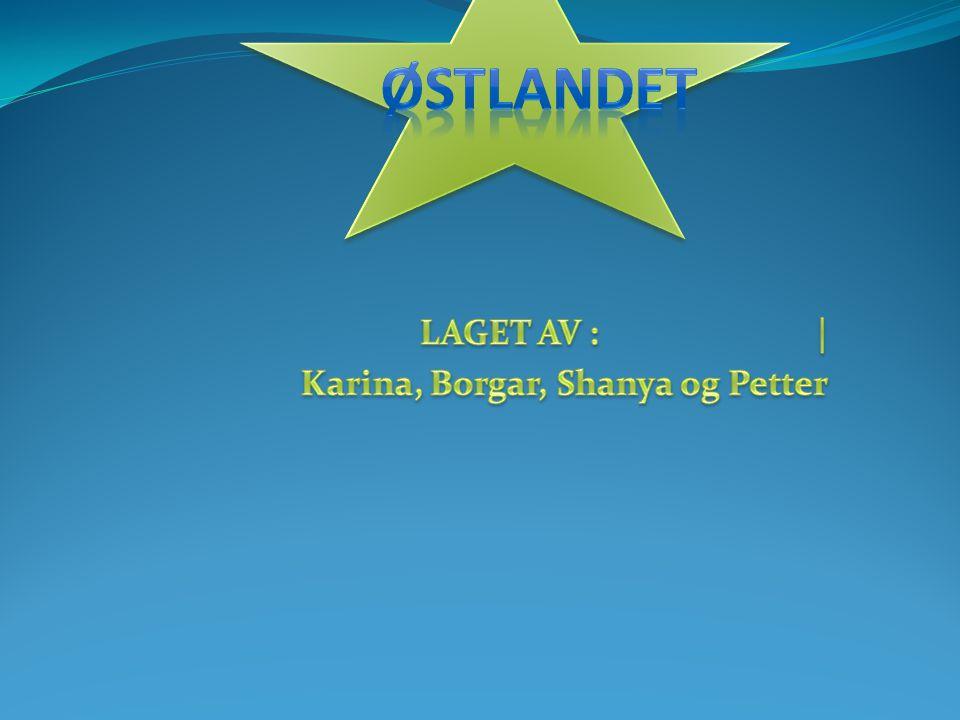 LAGET AV : | Karina, Borgar, Shanya og Petter