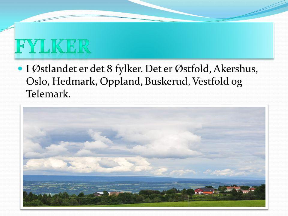 FYLKER I Østlandet er det 8 fylker.