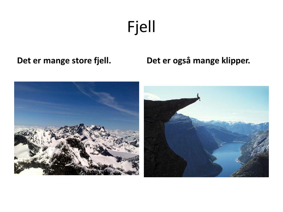 Fjell Det er mange store fjell. Det er også mange klipper.