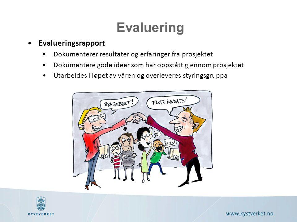 Evaluering Evalueringsrapport
