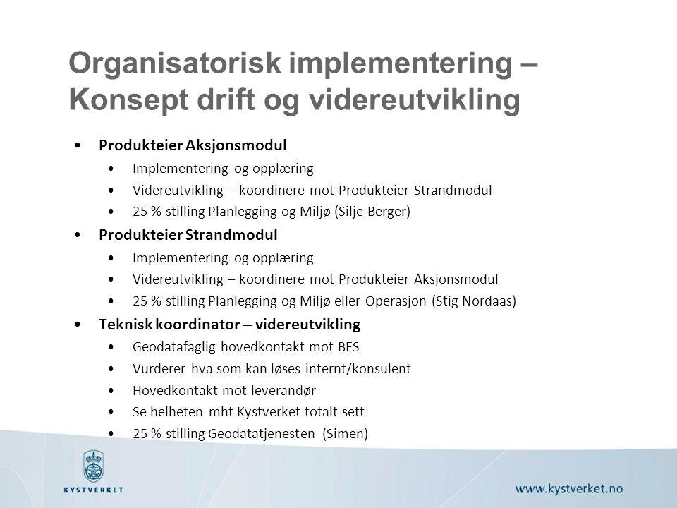 Organisatorisk implementering – Konsept drift og videreutvikling