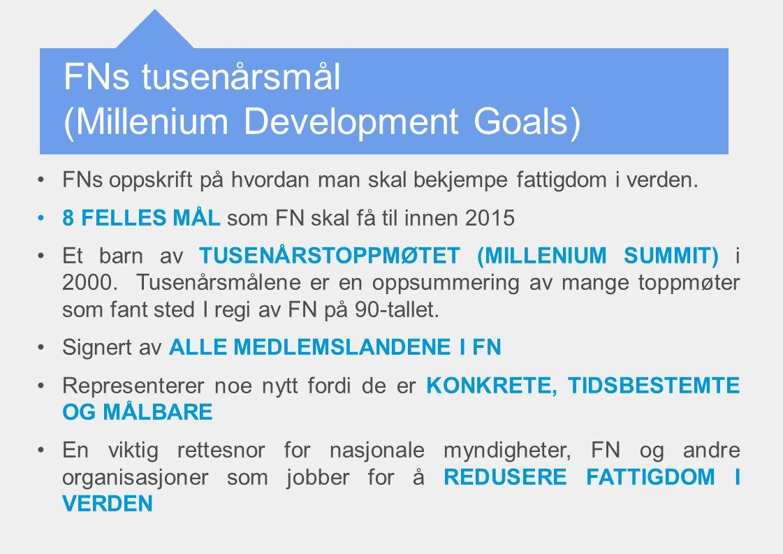 FNs tusenårsmål (Millenium Development Goals)