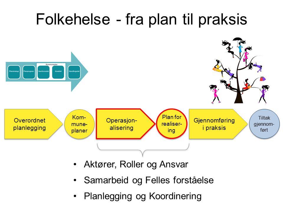Folkehelse - fra plan til praksis