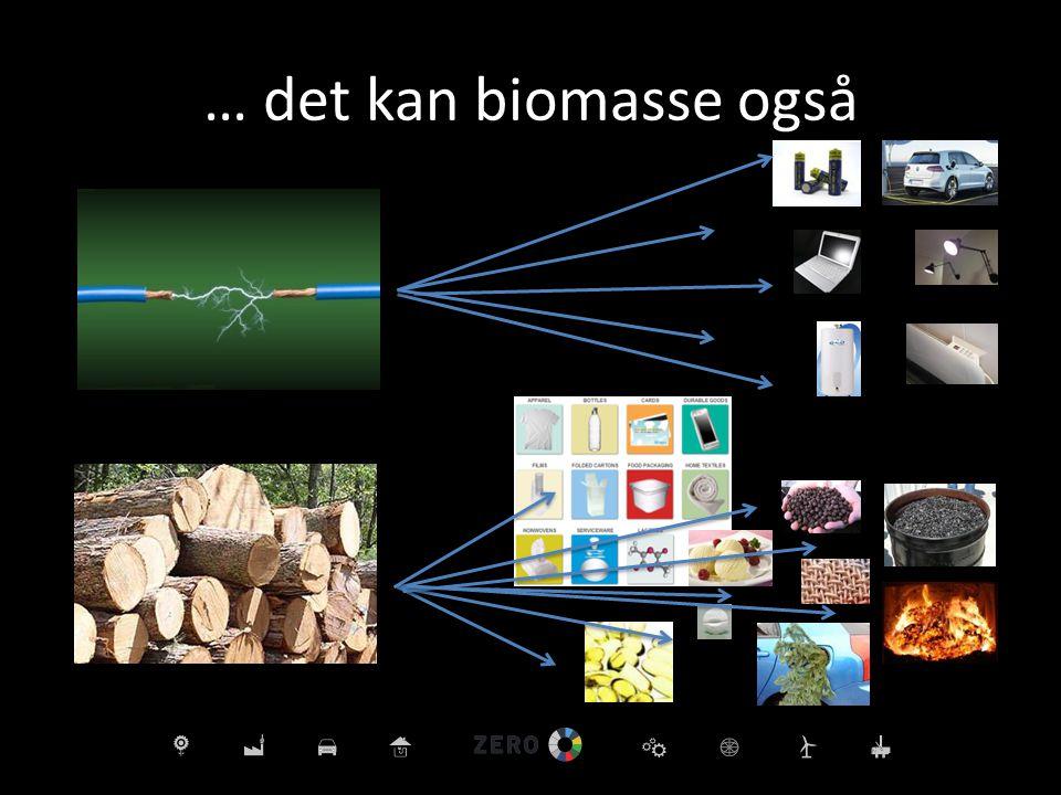… det kan biomasse også Det vil bli underskudd på biomasse i fremtiden