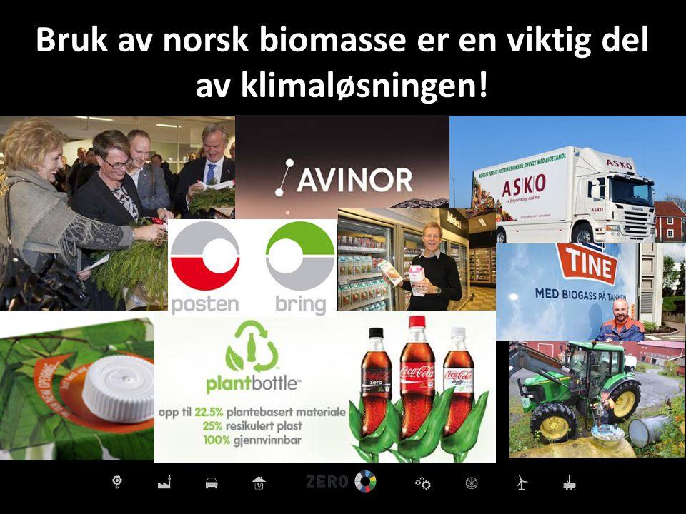 Bruk av norsk biomasse er en viktig del av klimaløsningen!