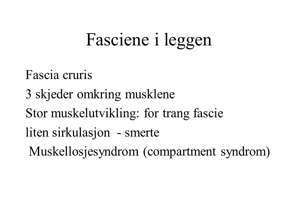 Fasciene i leggen Fascia cruris 3 skjeder omkring musklene