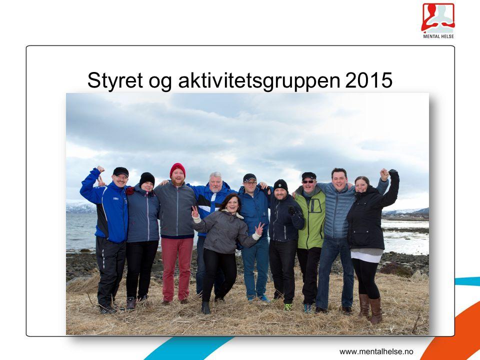 Styret og aktivitetsgruppen 2015