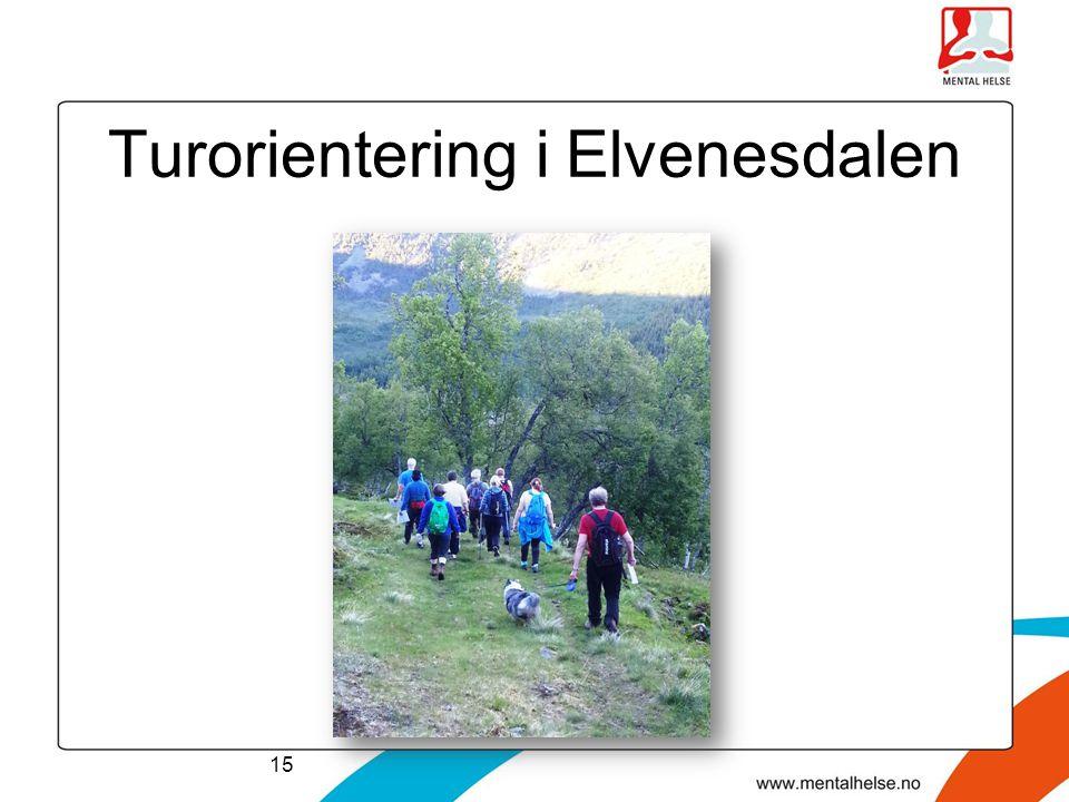 Turorientering i Elvenesdalen