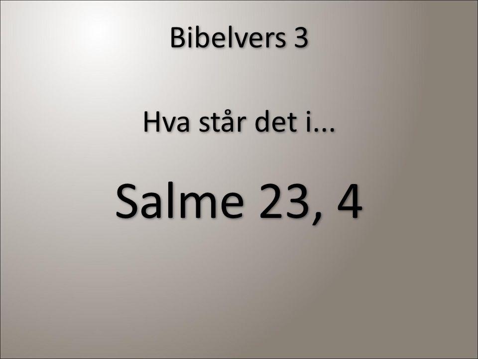 Bibelvers 3 Hva står det i... Salme 23, 4