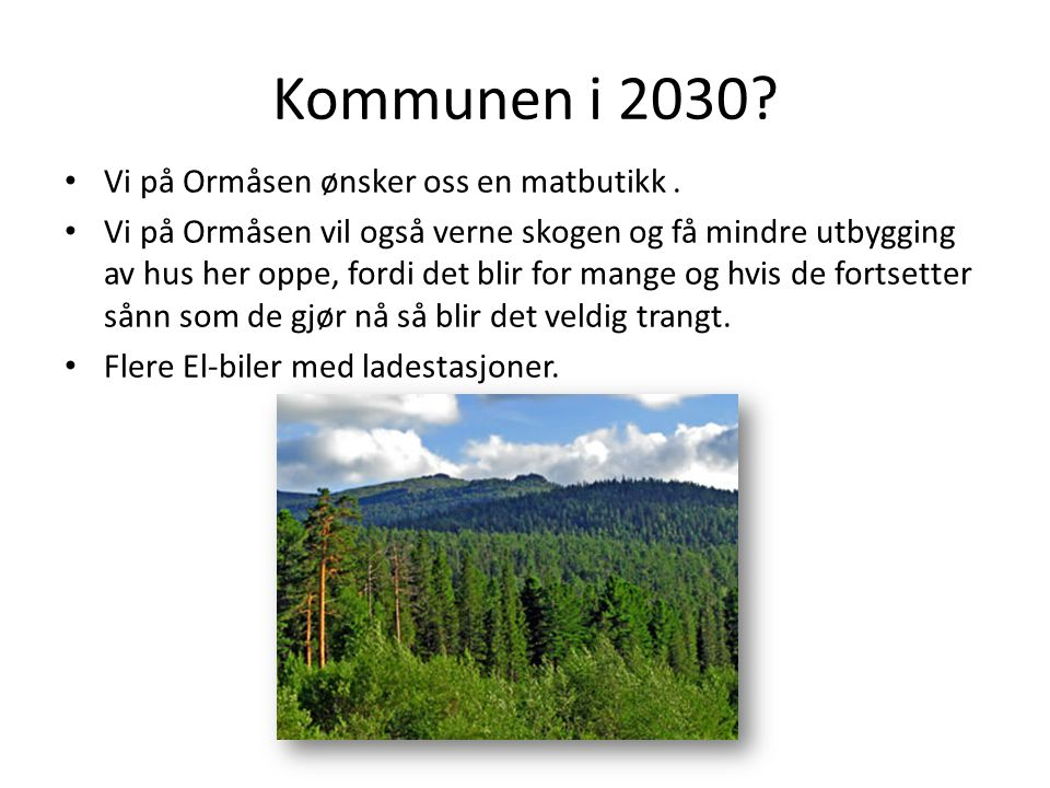 Kommunen i 2030 Vi på Ormåsen ønsker oss en matbutikk .