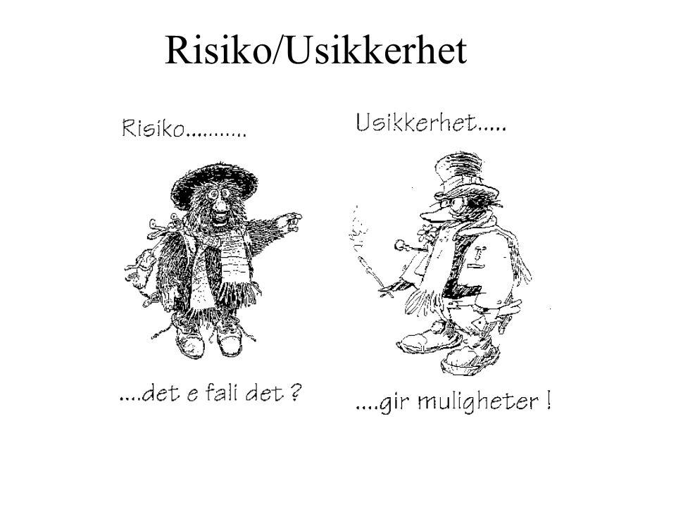Risiko/Usikkerhet