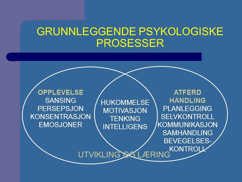 GRUNNLEGGENDE PSYKOLOGISKE PROSESSER