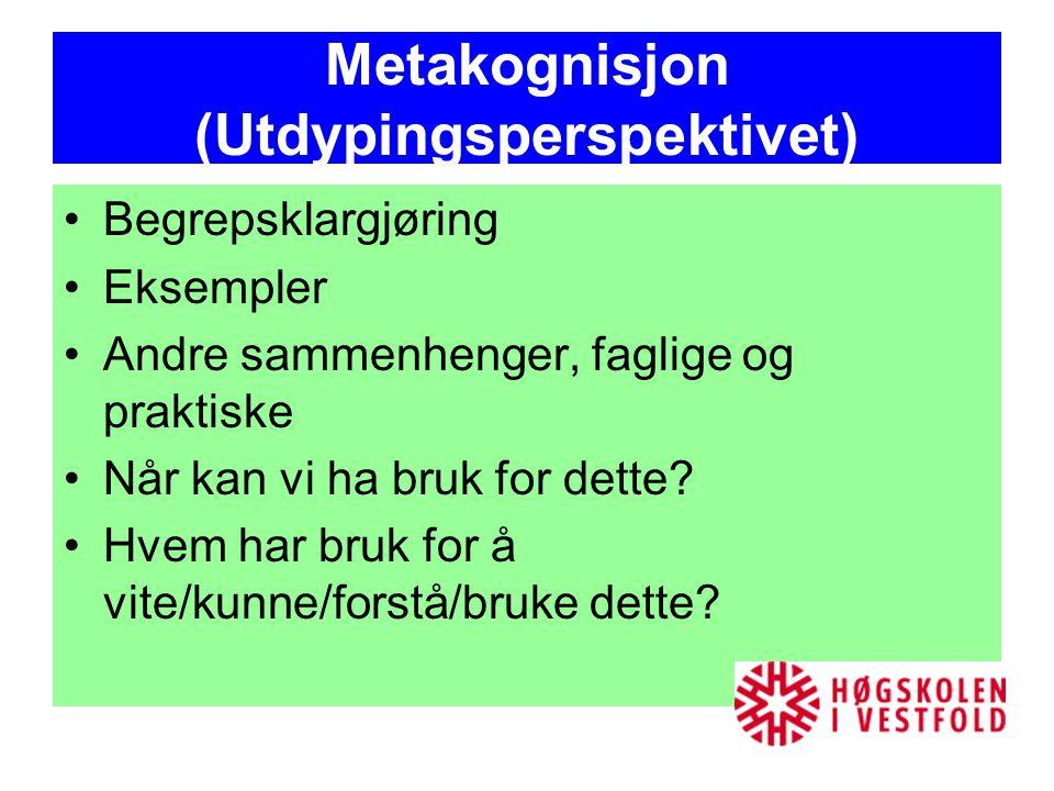 Metakognisjon (Utdypingsperspektivet)