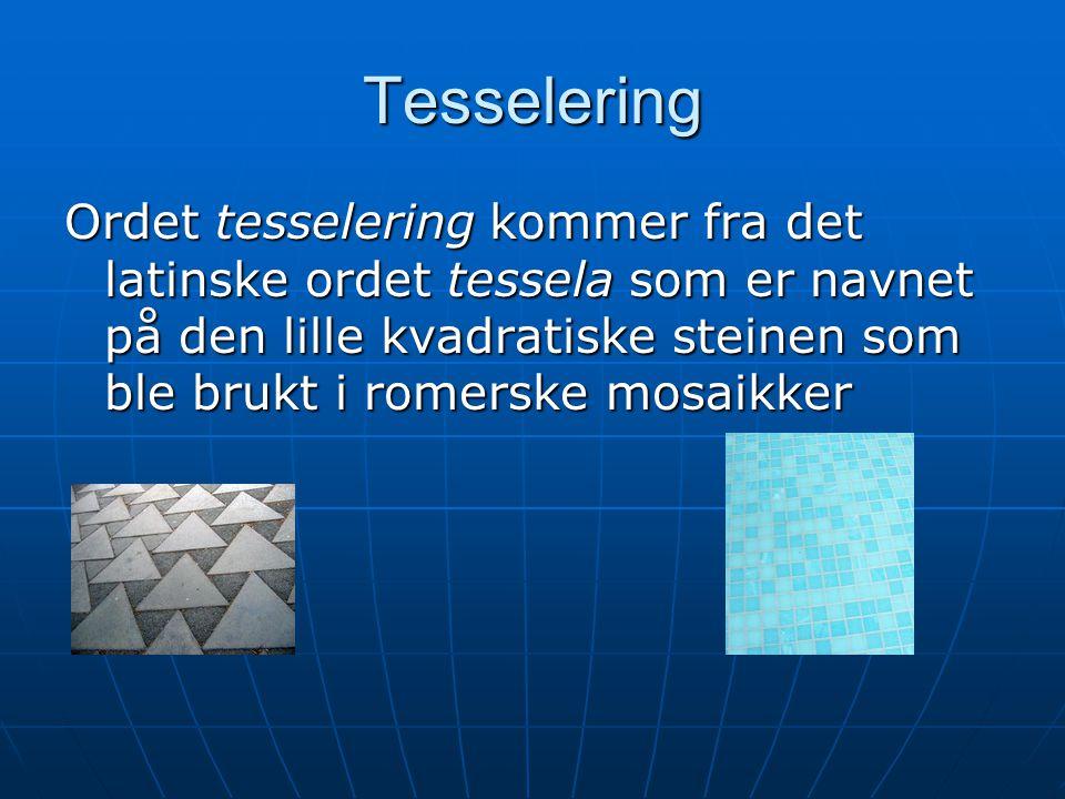 Tesselering Ordet tesselering kommer fra det latinske ordet tessela som er navnet på den lille kvadratiske steinen som ble brukt i romerske mosaikker.