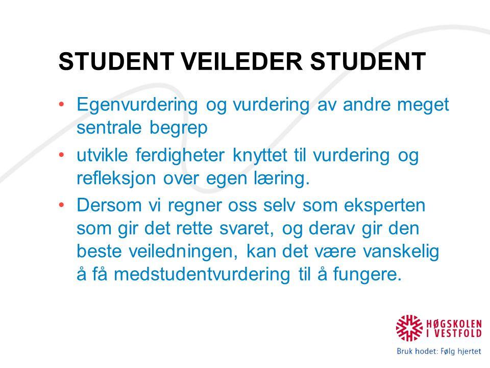 STUDENT VEILEDER STUDENT