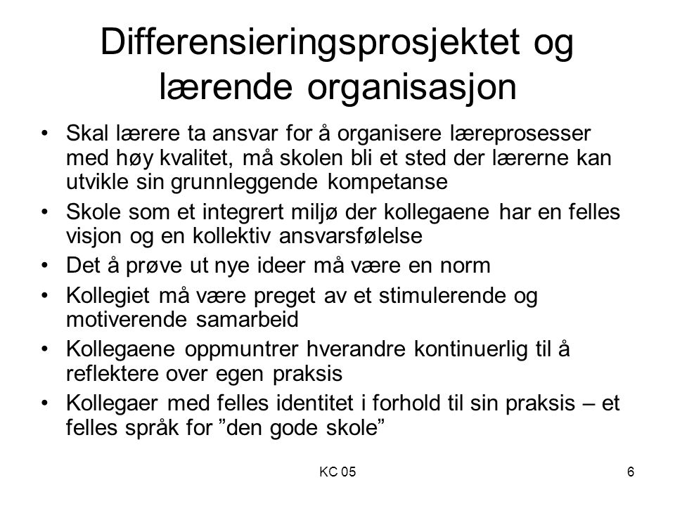Differensieringsprosjektet og lærende organisasjon