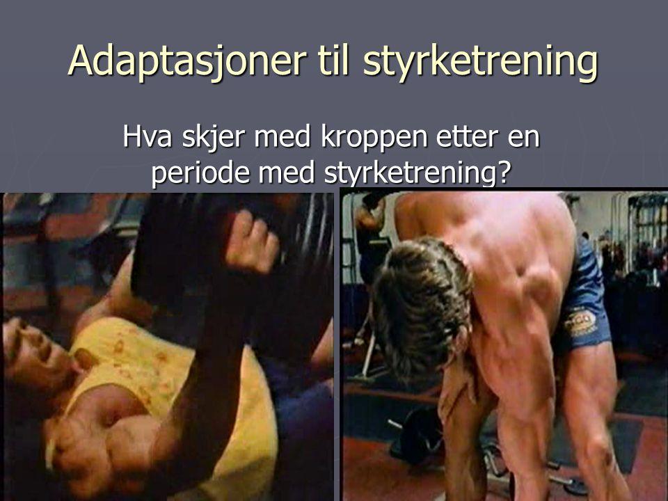 Adaptasjoner til styrketrening