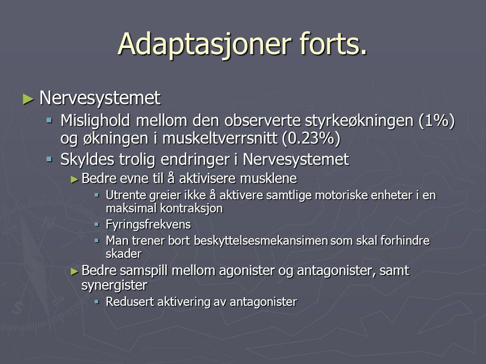 Adaptasjoner forts. Nervesystemet