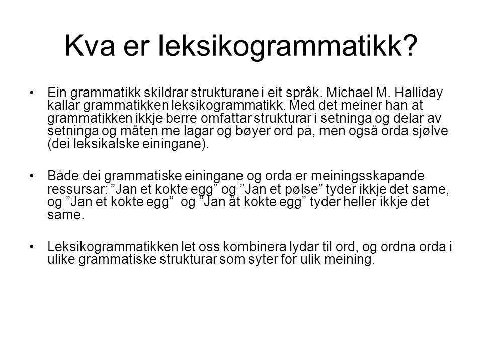 Kva er leksikogrammatikk