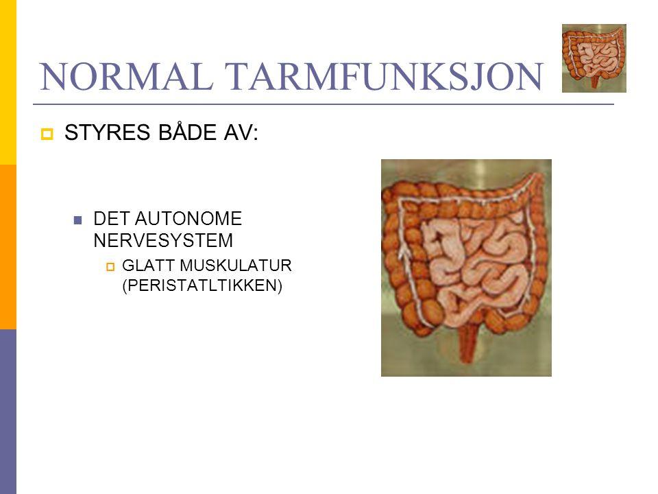NORMAL TARMFUNKSJON STYRES BÅDE AV: DET AUTONOME NERVESYSTEM
