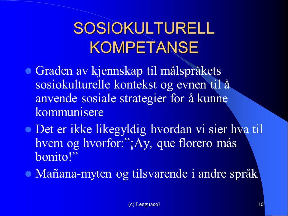 SOSIOKULTURELL KOMPETANSE