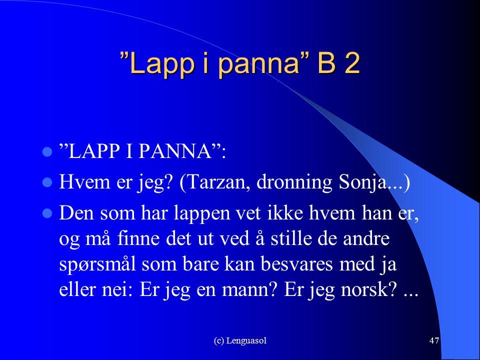 Lapp i panna B 2 LAPP I PANNA :