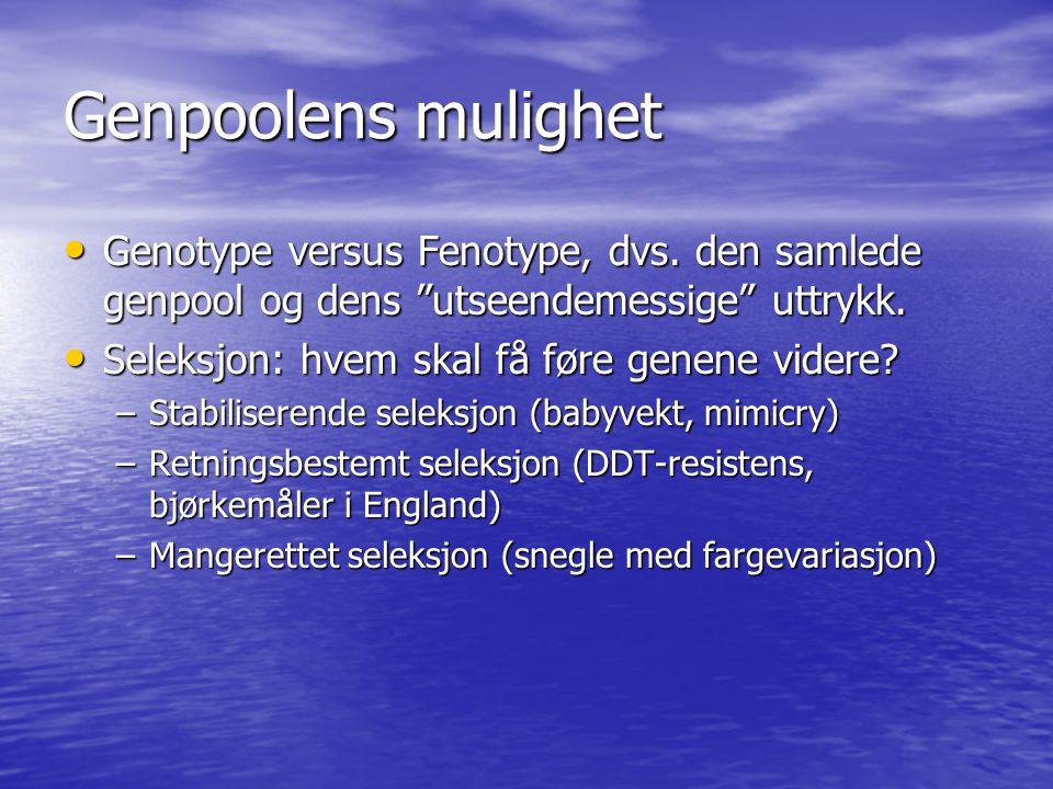 Genpoolens mulighet Genotype versus Fenotype, dvs. den samlede genpool og dens utseendemessige uttrykk.