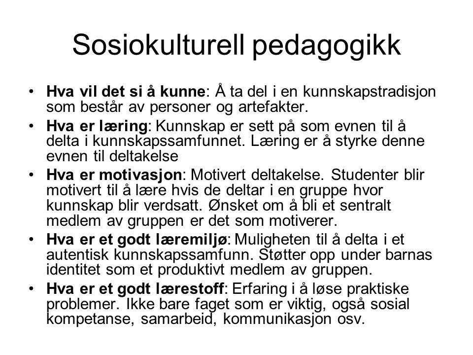 Sosiokulturell pedagogikk