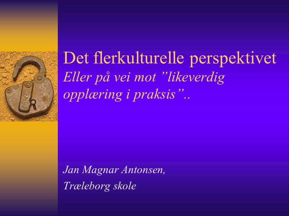 Jan Magnar Antonsen, Træleborg skole
