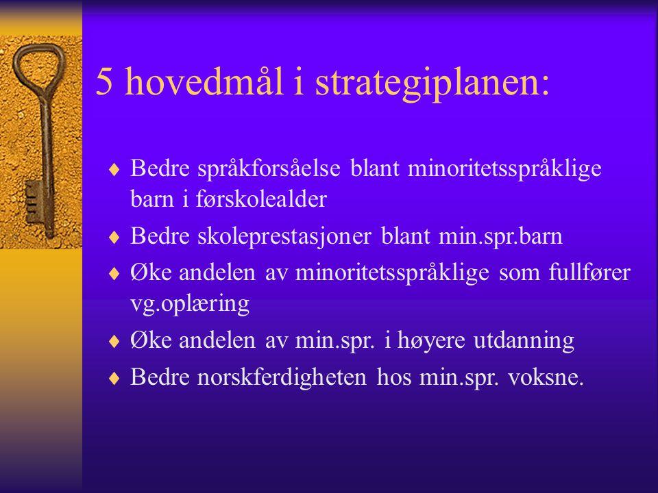 5 hovedmål i strategiplanen: