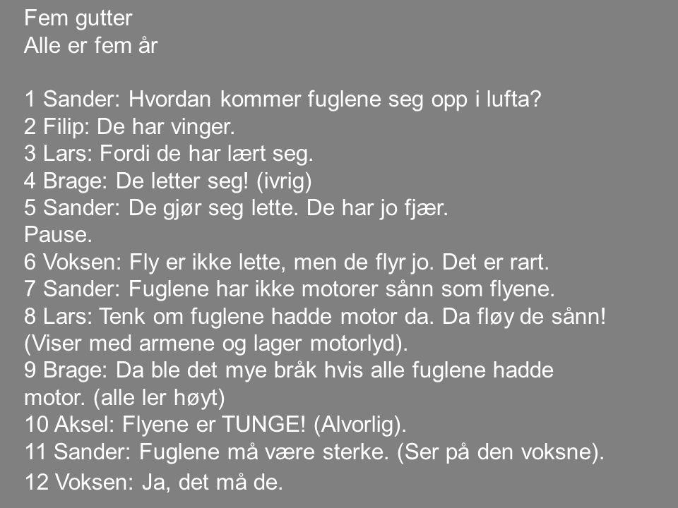 Fem gutter Alle er fem år. 1 Sander: Hvordan kommer fuglene seg opp i lufta 2 Filip: De har vinger.