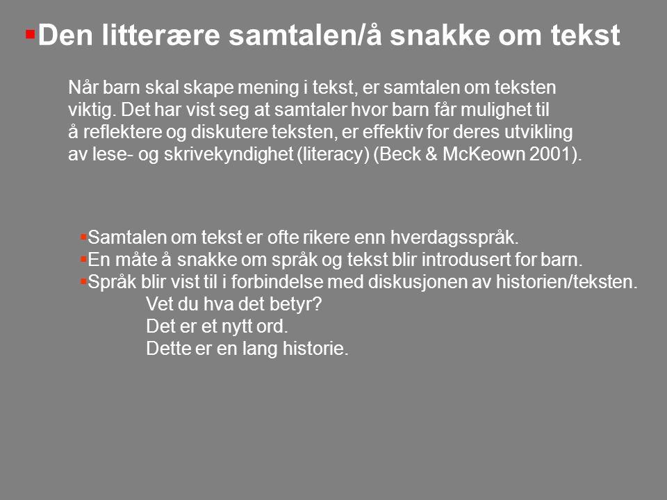 Den litterære samtalen/å snakke om tekst