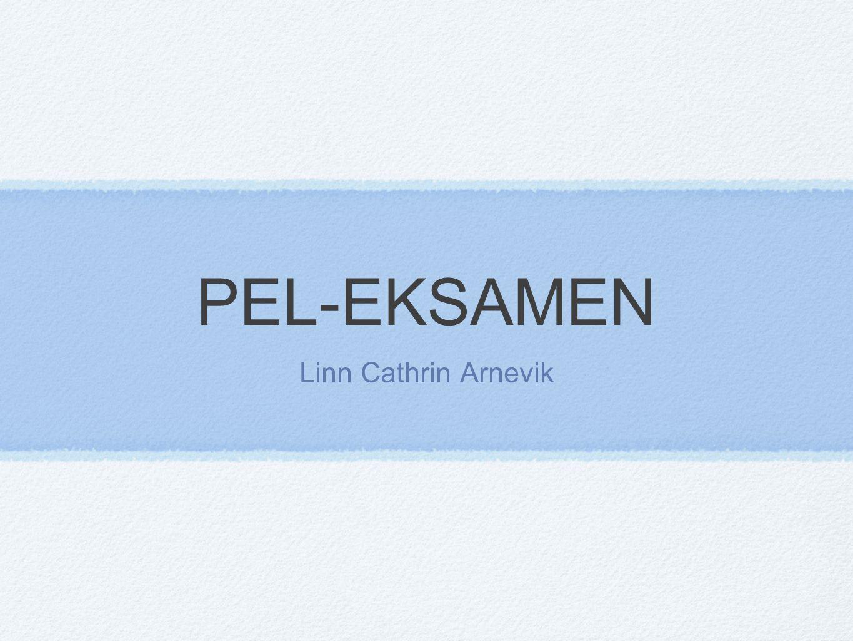 PEL-EKSAMEN Linn Cathrin Arnevik