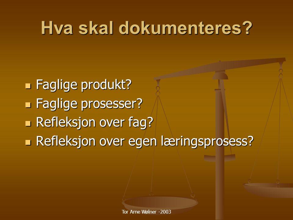 Hva skal dokumenteres Faglige produkt Faglige prosesser
