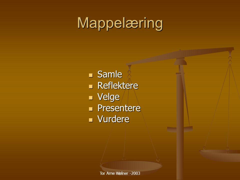 Mappelæring Samle Reflektere Velge Presentere Vurdere