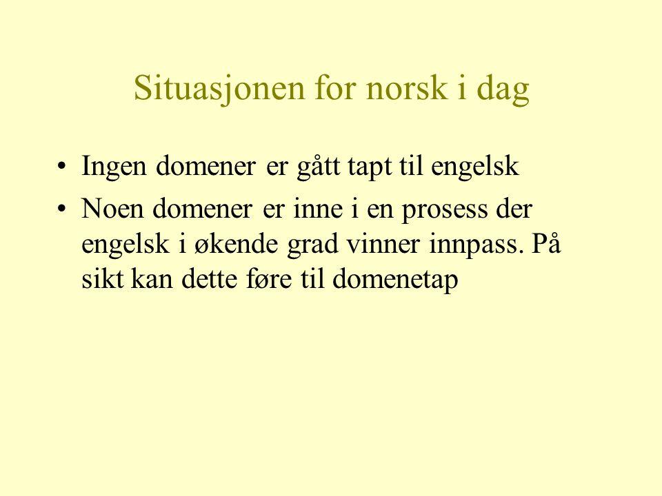 Situasjonen for norsk i dag