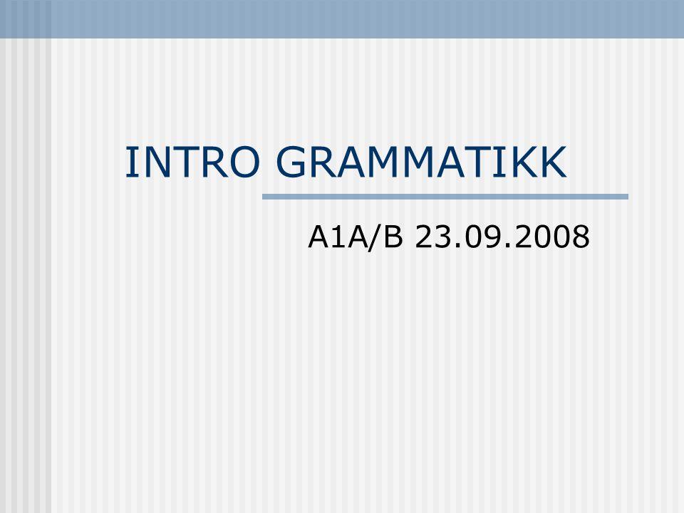 INTRO GRAMMATIKK A1A/B 23.09.2008