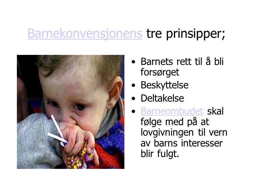 Barnekonvensjonens tre prinsipper;