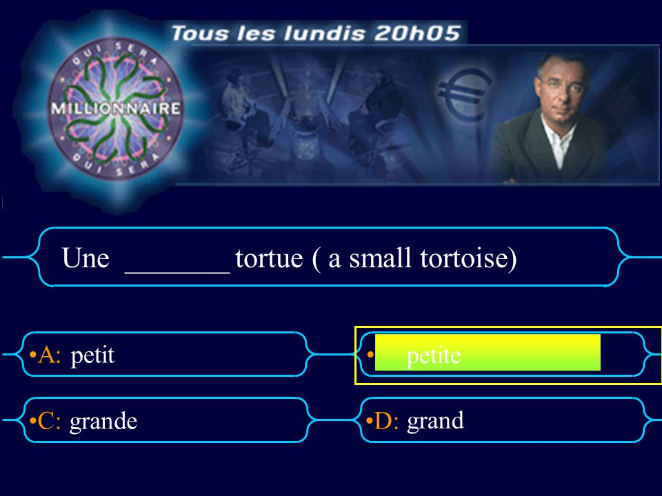 Une _______ tortue ( a small tortoise)