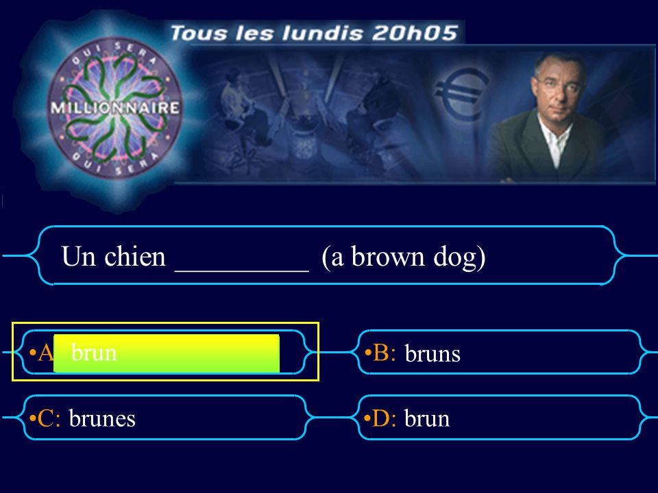 Un chien _________ (a brown dog)