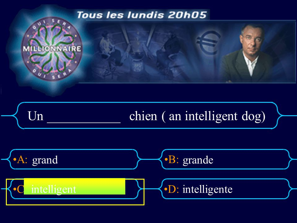 Un ___________ chien ( an intelligent dog)
