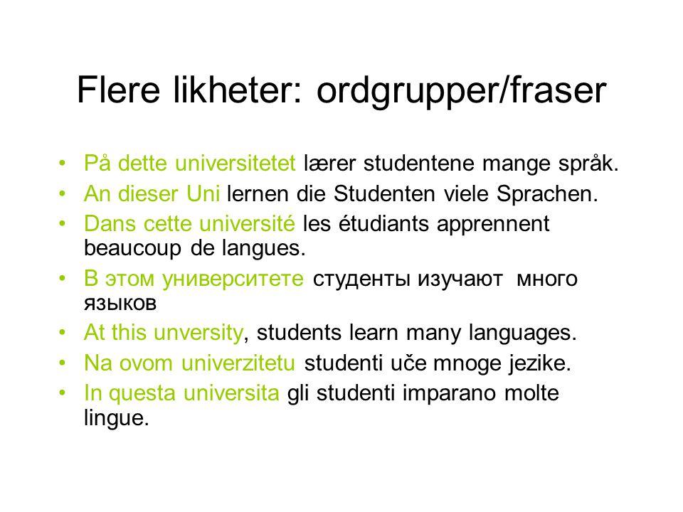 Flere likheter: ordgrupper/fraser