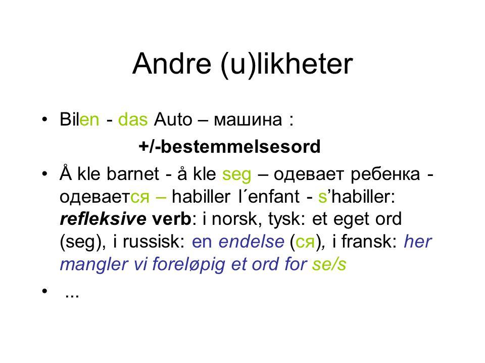 Andre (u)likheter Bilen - das Auto – машинa : +/-bestemmelsesord