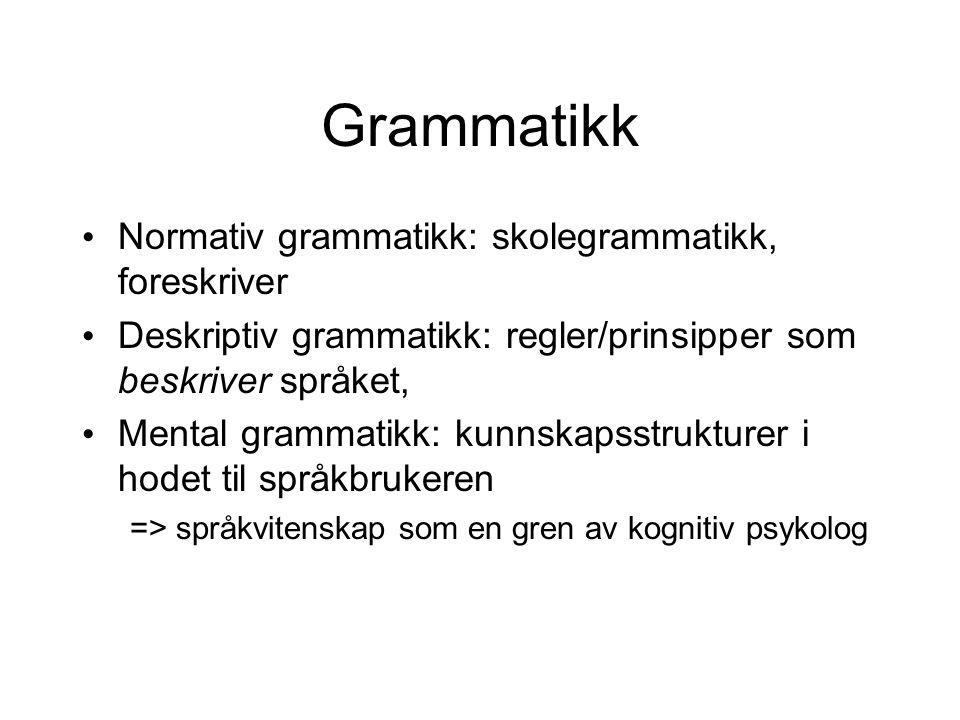 Grammatikk Normativ grammatikk: skolegrammatikk, foreskriver
