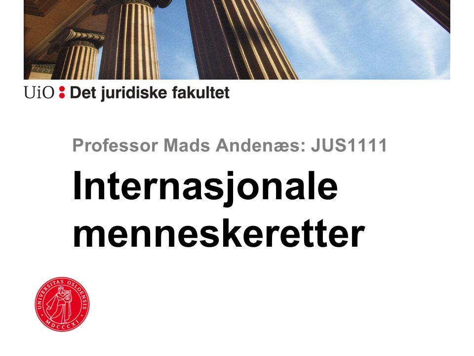 Professor Mads Andenæs: JUS1111