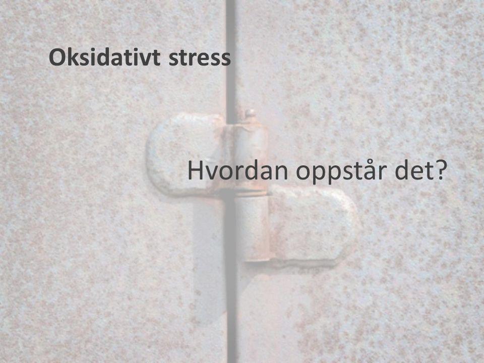Oksidativt stress Hvordan oppstår det