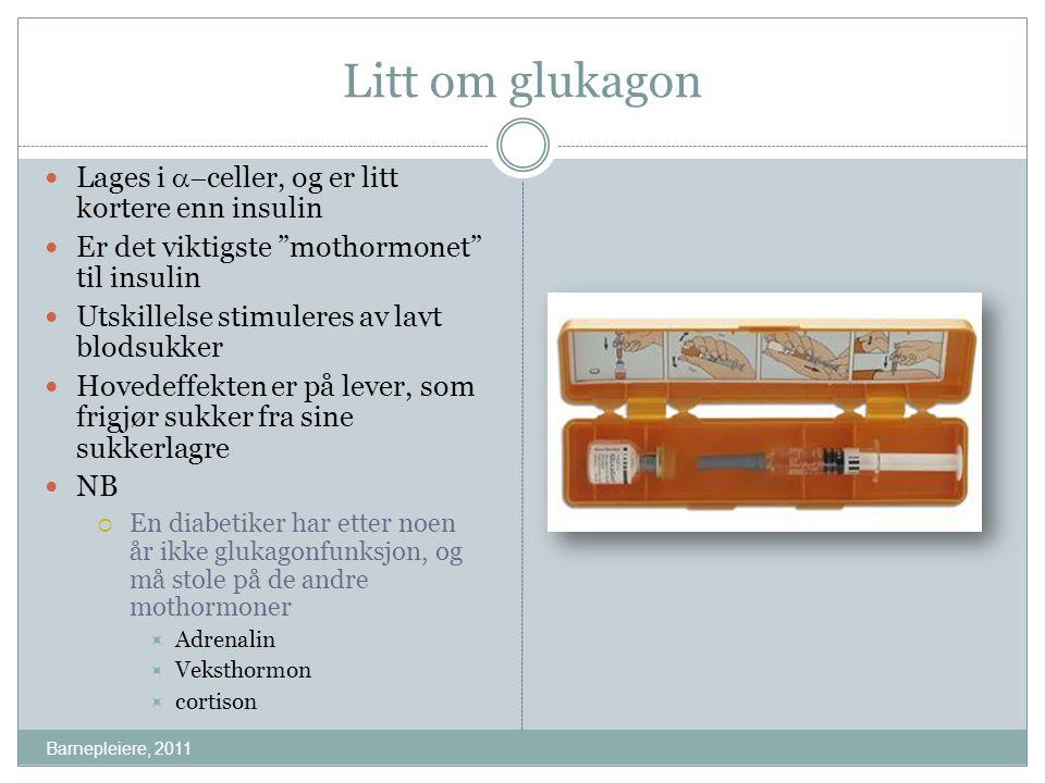 Litt om glukagon Lages i a-celler, og er litt kortere enn insulin