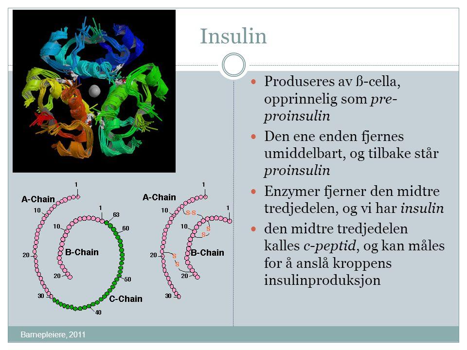 Insulin Produseres av ß-cella, opprinnelig som pre-proinsulin