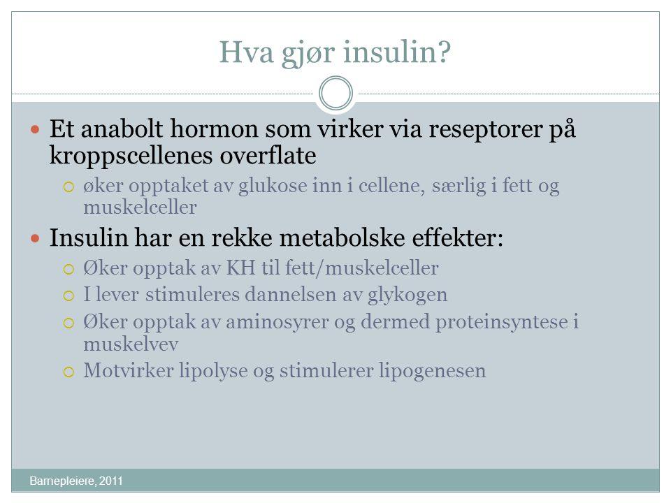 Hva gjør insulin Et anabolt hormon som virker via reseptorer på kroppscellenes overflate.