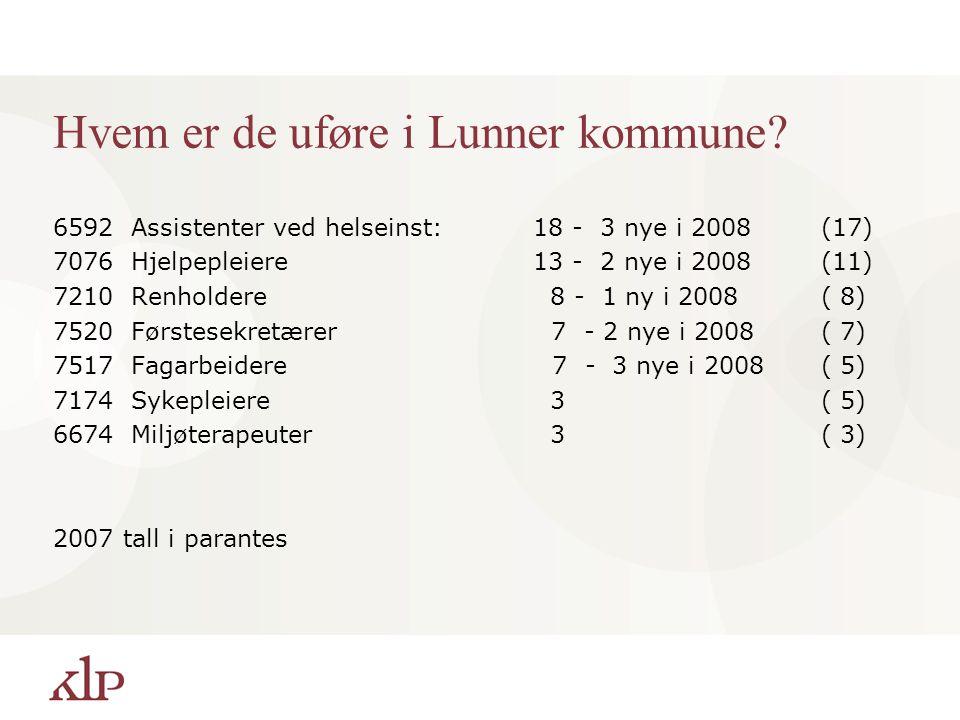 Hvem er de uføre i Lunner kommune
